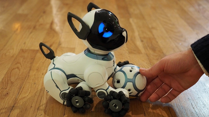 Câinele-robot, CHiP. E mic, jucăuş şi la sigur veţi deveni rapid cei mai buni prieteni (VIDEO)