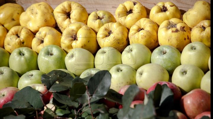 Sănătos şi gustos! Beneficiile nebănuite ale fructelor şi legumelor