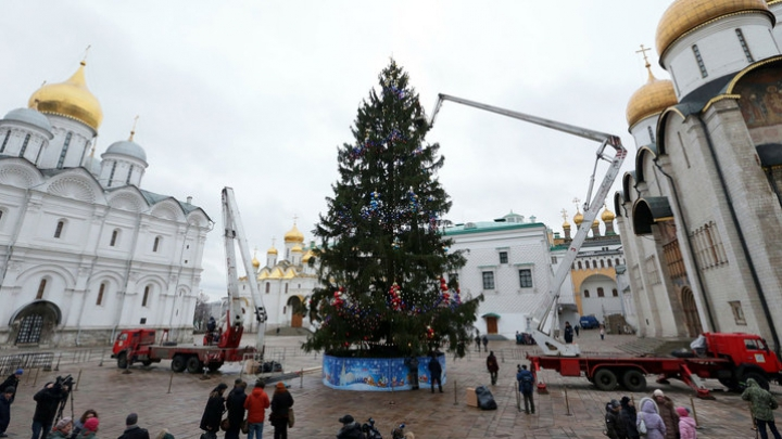 A fost văzut din Cosmos! Rușii au ales Pomul de Crăciun care va fi instalat la Kremlin