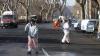 GRAURII de la Roma au umplut străzile cu găinaţ şi au provocat zeci de accidente. REACŢIA AUTORITĂŢILOR