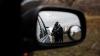 L-au împuşcat şi l-au ascuns în geantă. Cinci bărbaţi, prinşi în flagrant de poliţiştii din Glodeni (VIDEO)