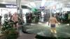 NO COMMENT. Nu au mai avut răbdare până la Bobotează. Un havuz din magazin a fost găsit potrivit (VIDEO)