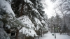 METEO 5 ianuarie 2016: Temperaturile, într-o uşoară creştere. Pe drumuri se va forma polei