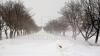 Ninge ABUNDENT în sudul ţării. Câtă zăpadă s-a depus la Ştefan Vodă şi ce temperaturi se aşteaptă luni