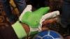 CES 2016: Mănușile care permit construirea și controlarea roboților prin gesturi