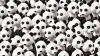 Găseşte intrusul! Cât de repede depistezi câinele ascuns printre urşii panda