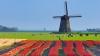 ROTAŢIE EUROPEANĂ: Cu ce se vor confrunta Ţările de Jos, la timona UE