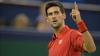 Novak Djokovic este primul finalist al primului turneu de Mare Şlem de la Australian Open