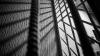 """Un tânăr de 25 de ani riscă să iasă din închisoare la 76. Ce """"afacere"""" i-a distrus viaţa (FOTO)"""