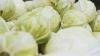 UIMITOR! Motivul pentru care trebuie să mănânci zilnic 300 de grame de varză crudă