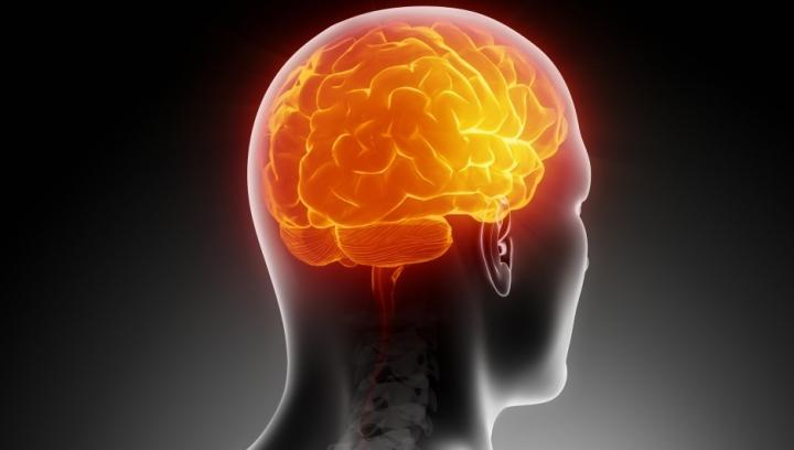 Curios! Câți gigabiți de informație ar încăpea în creierul tău? (VIDEO)