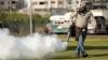 Brazilia a declarat RĂZBOI ŢÂNŢARILOR: A mobilizat armata și bugetarii