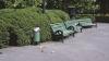 Pentru o Capitală mai curată! Peste 1.000 de coșuri de gunoi vor fi instalate în oraș