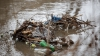 Ce se întâmplă pe malurile râului Bâc este de-a dreptul revoltător (FOTOREPORT)