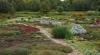 SCANDAL la Grădina Botanică! De ce este nemulţumită administraţia parcului