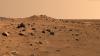 Ciuperci care pot supravieţui pe Marte, cultivate cu succes în spaţiu