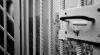 Un bărbat din Dubăsari, condamnat la închisoare. Ilegalitatea comisă de inculpat