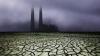 Specii care vor moşteni Pământul după DISPARIŢIA OAMENILOR? Dezvăluiri privind posibili concurenţi