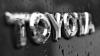 Cel mai mare producător auto din lume, Toyota Motor, a oprit producţia la toate fabricile din Japonia