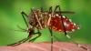 AVERTIZARE: Virusul care a semănat panică în toată lumea SE APROPIE DE MOLDOVA