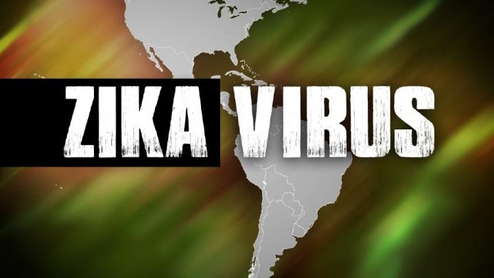 Virusul Zika. UE creează un grup de lucru în domeniul medicamentelor împotriva agentului patologic