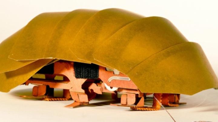 Gândacii ROBOŢI - viitoarele ajutoare ale echipelor de salvare în cazul dezastrelor