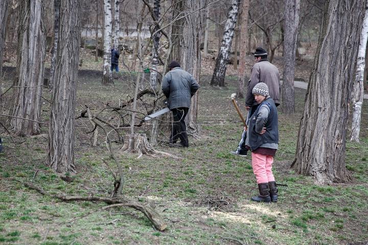 FORFOTĂ MARE la Valea Morilor! Ce se întâmplă în parcul din Capitală în ultimele zile de iarnă (FOTOREPORT)