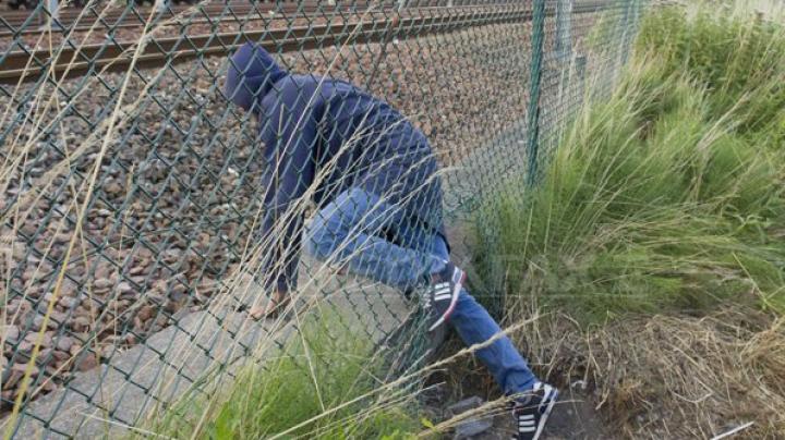 Austria va construi gard metalic pe un segment al frontierei cu Italia