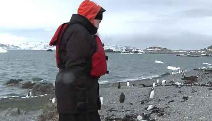 Pinguinii din Antarctida l-au primit în ospeţie pe Patriarhul Bisericii Ortodoxe Ruse (FOTO/VIDEO)
