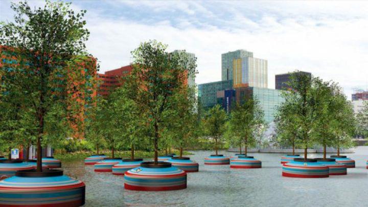 Proiect spectaculos în Rotterdam. O pădure de copaci plutitori va apărea pe râul ce traversează oraşul