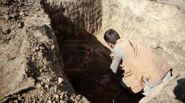 DESCOPERIRE FABULOASĂ! Șase mumii, găsite într-un mormânt din epoca faraonilor din apropiere de Luxor