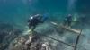 A găsit o corabie veche de 500 de ani în timp ce făcea scufundări. Ce a descoperit este de-a dreptul uimitor