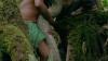 Cel mai mare șarpe din lume, descoperit în jungla amazoniană. Ce lungime are reptila (VIDEO)
