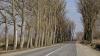 Priveliște ÎNGROZITOARE la marginea Chișinăului! Nimeni nu ia nicio măsură (FOTO)