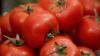 Vom avea comerţ liber cu Turcia. Cum vor fi protejaţi producătorii de tomate moldoveneşti