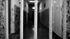 Au fost recunoscuți VINOVAȚI: Doi polițiști, condamnați la închisoare pentru acte de corupție
