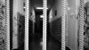CRIMĂ ÎN SERIE! O infirmieră suspectată de uciderea a 13 pacienți, ARESTATĂ