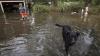 Vremea rea face victime în SUA: Cel puțin cinci persoane și-au pierdut viața din cauza inundațiilor (FOTO)