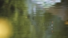A fugit cât ai zice pește. Ce a văzut un bărbat în timp ce a ridicat pluta de momit somnii