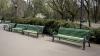 Băncile din parcurile din Capitală vor fi REPARATE. Bugetul alocat pentru renovarea acestora