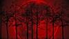 SEMNIFICAȚII UIMITOARE: Ce înseamnă dacă visezi sânge