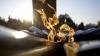 """E cel mai """"VEŞNIC"""" foc! Fotografia surprinsă la un memorial din Rusia a devenit VIRALĂ (FOTO)"""