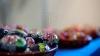 TRUC! Cea mai inedită metodă prin care pot fi vopsite ouăle de Paşte (VIDEO)