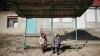 Bătrânețe, haine grele. Cum își trăiesc moldovenii ultimii ani de viață