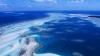 Cercetătorii dau ALARMA! Marea Barieră de Corali este ÎN PERICOL