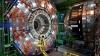"""ULUITOR: Un mamifer mic a reușit să """"saboteze"""" cel mai puternic accelerator de particule din lume"""