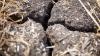 ALARMANT! Fermierii spun că ar putea rămâne fără surse de apă pentru irigarea culturilor