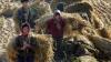 ONU bate alarma: Trei sferturi dintre nord-coreeni au nevoie de ajutor umanitar (FOTO)
