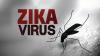 ÎNGRIJORĂTOR! Încălzirea globală, un factor ce contribuie la răspândirea rapidă a virusului Zika