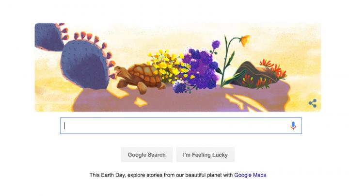 ZIUA PAMANTULUI. Google celebreaza ZIUA PAMANTULUI cu un logo special